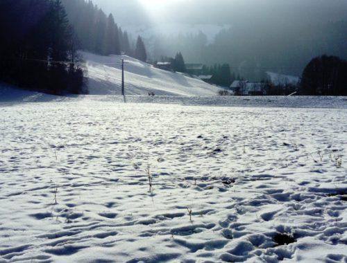 hiver abondance rando